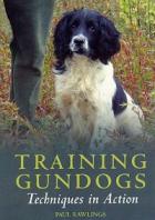 Training Gundogs DVD image